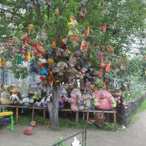 """Podziwianie wybitnych dzieł """"sztuki komunalnej"""" na petersburskich osiedlach"""